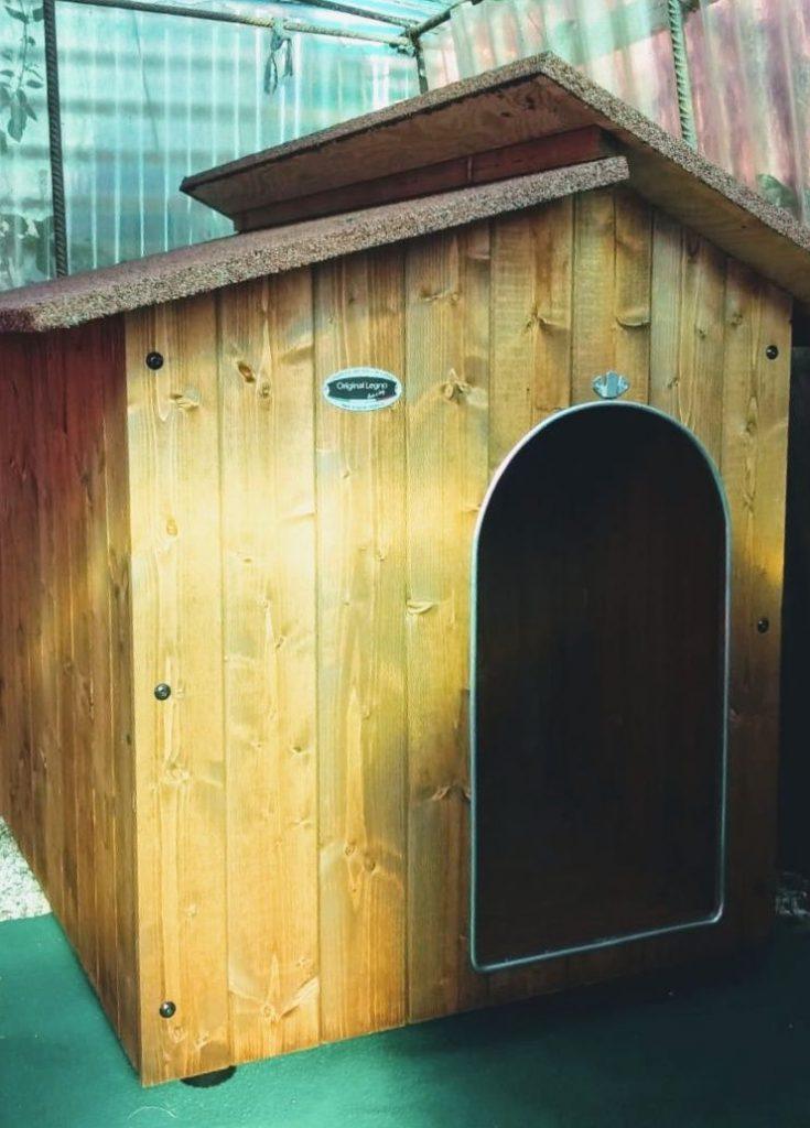 Hundehütten Aufbau 1